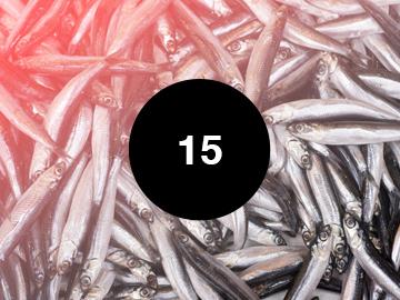 15. Menua